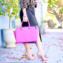 The Pink & The Leopard